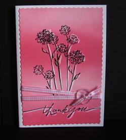Thankyou script Pink