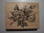Stipple Rose - Fine detail